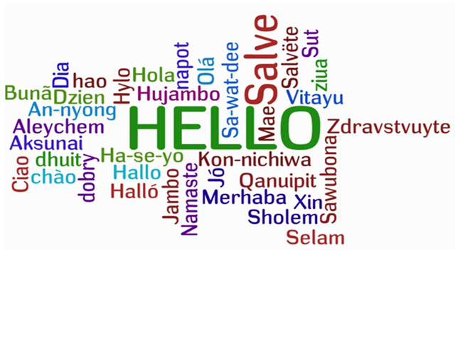 professional translators and interpreters to and from all languages